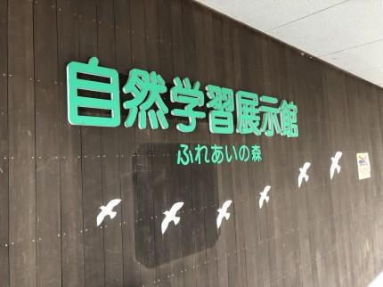 自然学習展示館
